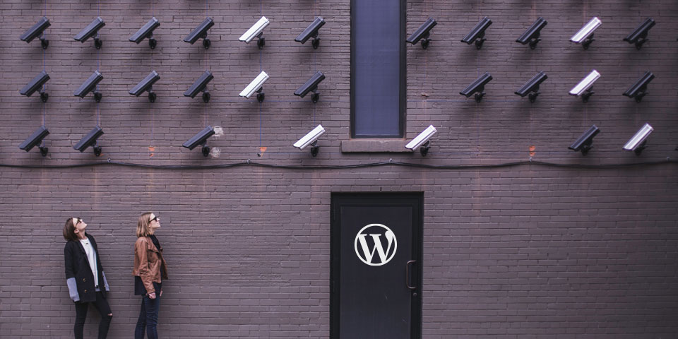 A Primer on WordPress Security