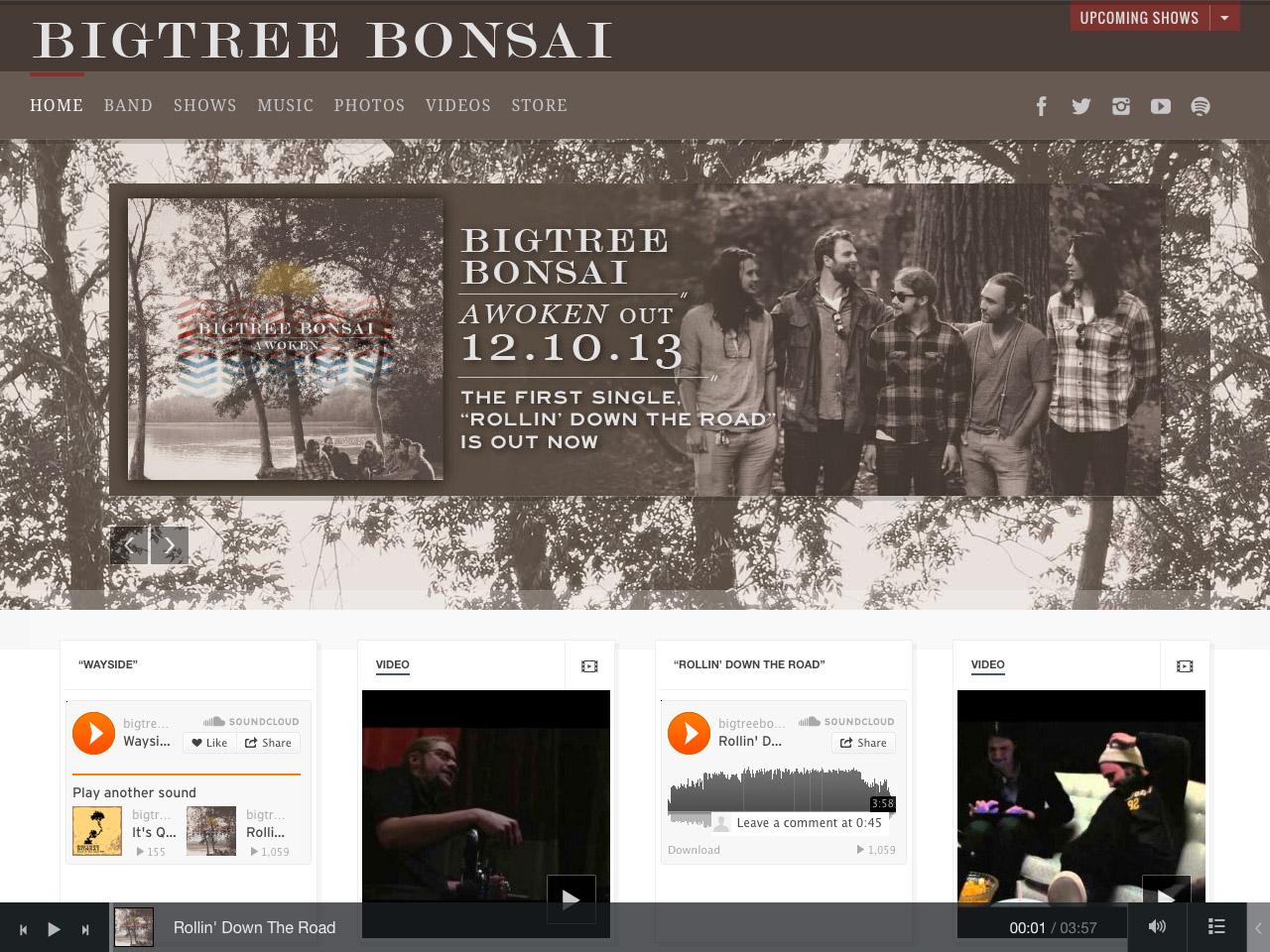 showcase-Big-Tree-Bonsai